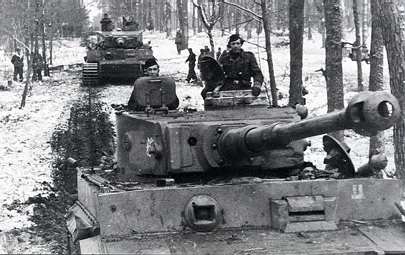 German Tiger
